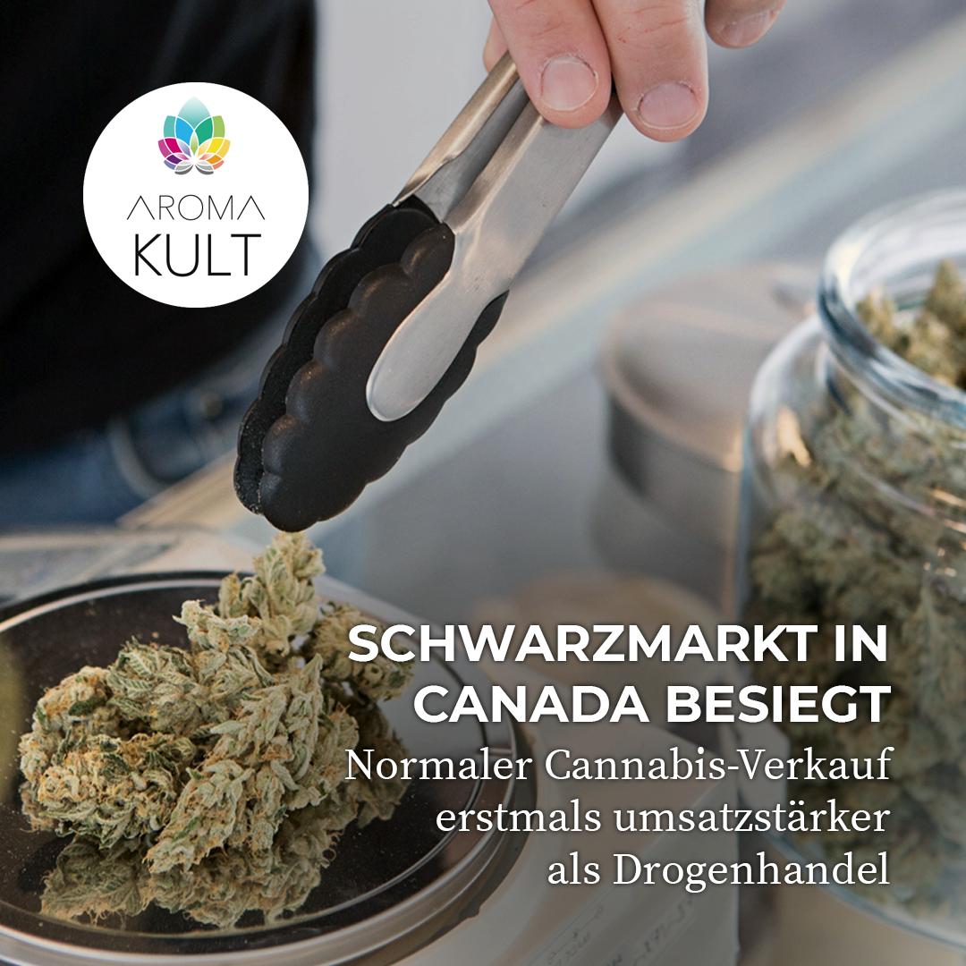 Cannabis-Umsatzrekord in Kanada