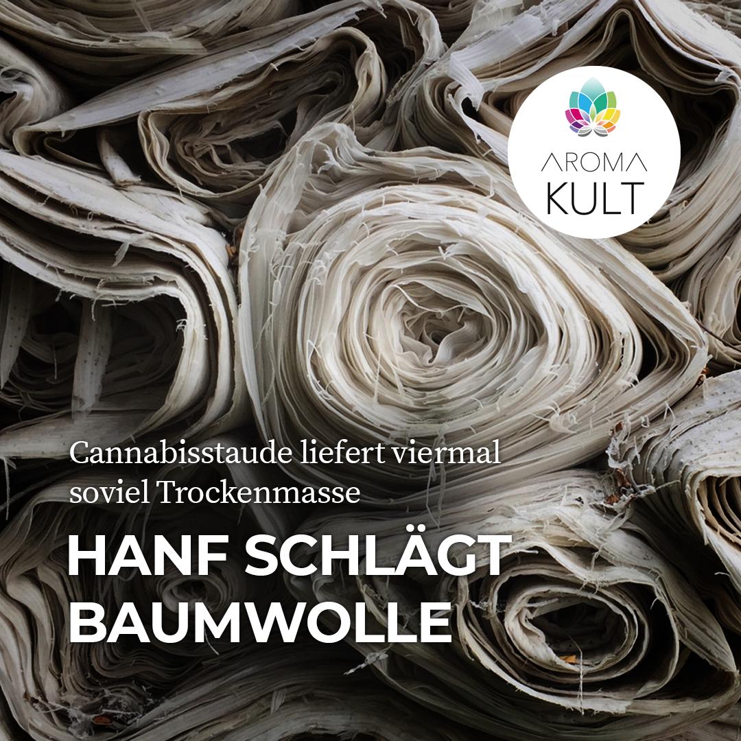 4x mehr Trockenmasse: Deutsche Forscher belegen Überlegenheit von Cannabis