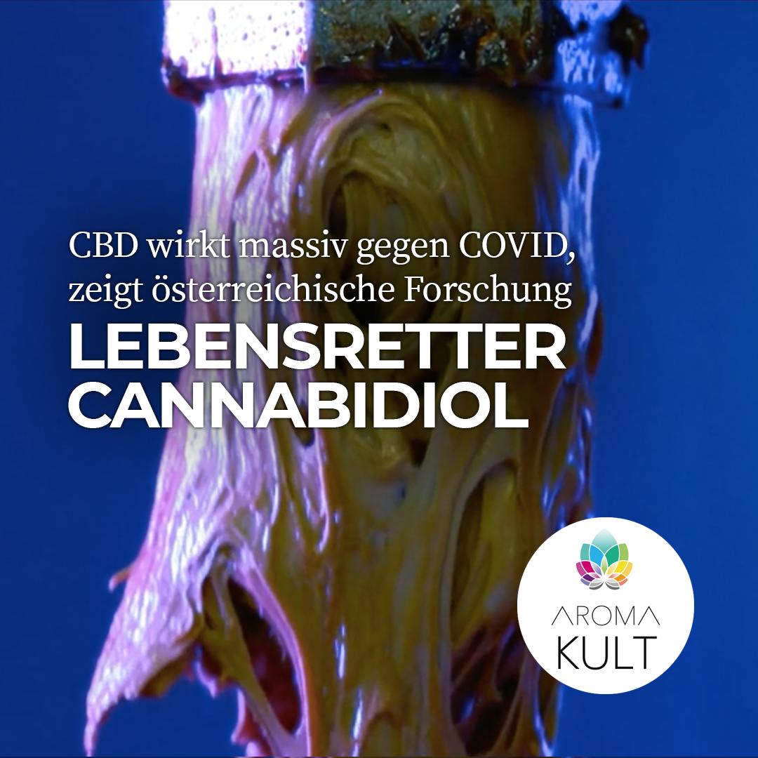 COVID19: Lebensgefährlicher Zytokine-Sturm durch CBD massiv abgemildert