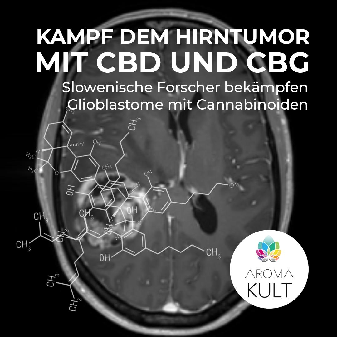 Nano-Cannabis soll gefürchteten Hirntumor eindämmen