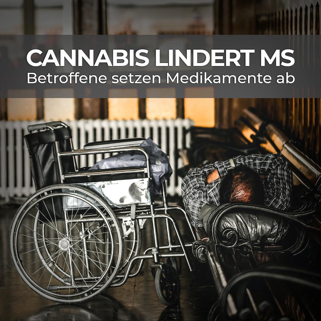 MS-Studie zeigt großen Cannabis-Zuspruch bei Betroffenen