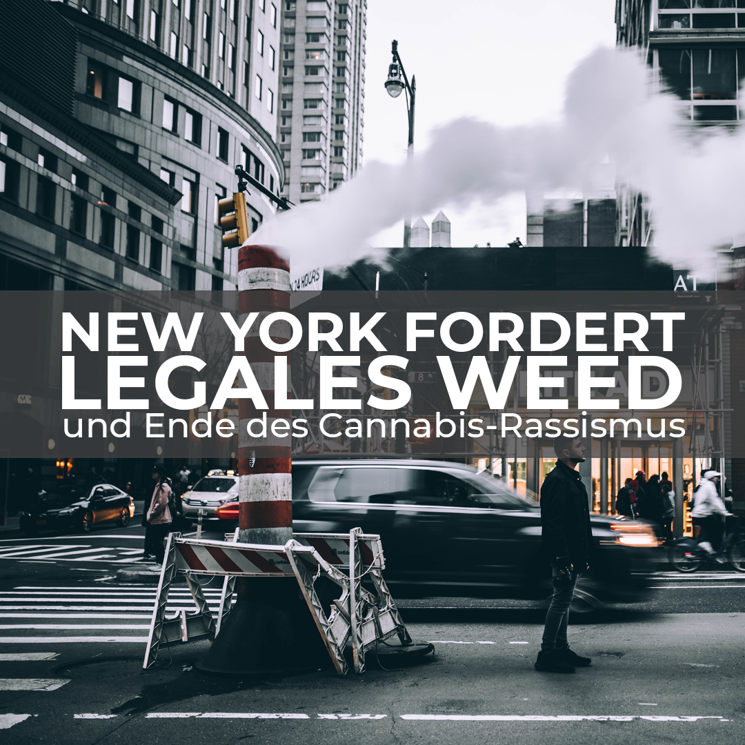 NYC 2020: Cannabis-Straftäter*innen zu 94 % People of Color