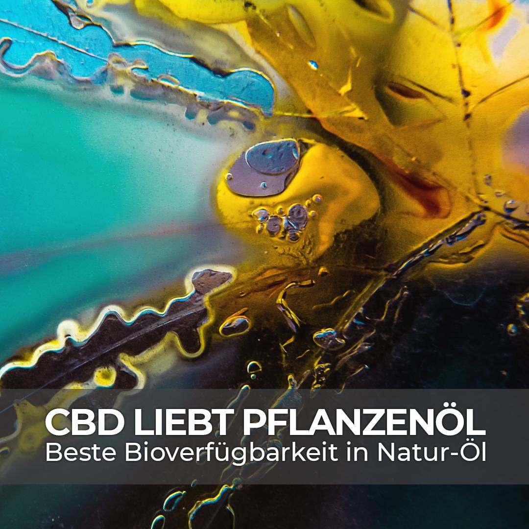 Studie belegt: Über Pflanzenöl gelangt CBD optimal in den Körper